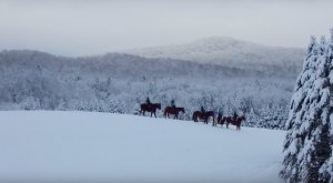 The Winter Horseback Riding Trail In Vermont That's Pure Magic
