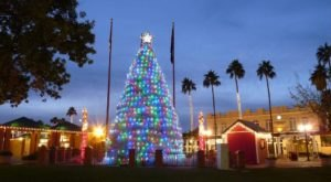 You've Never Seen A More Uniquely Arizona Christmas Tree Than This One