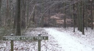 10 Picturesque Trails In Delaware That Are Perfect For Winter Hiking