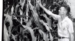 These 12 Rare Photos Show Tennessee's Farming History Like Never Before