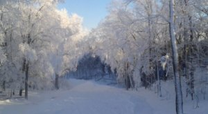 If You Live In Minnesota, You'll Want To Visit This Amazing Park This Winter