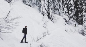 8 Picturesque Trails Around Portland That Are Perfect For Winter Hiking