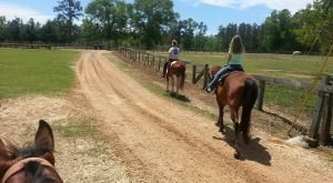 The Winter Horseback Riding Trail Near New Orleans That's Pure Magic