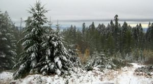 10 Picturesque Trails In Idaho That Are Perfect For Winter Hiking