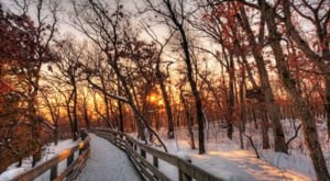 If You Live In Illinois, You'll Want To Visit This Amazing Park This Winter