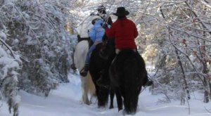 The Winter Horseback Riding Trail At Carousel Horse Farm In Maine Is Pure Magic