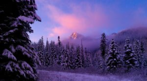 8 Majestic Spots In Washington That Will Make You Feel Like You're At The North Pole