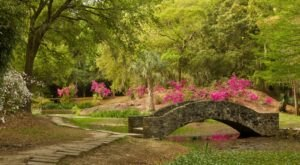 The Unique Park Everyone Near New Orleans Should Visit At Least Once