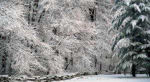 10 Picturesque Trails In Indiana That Are Perfect For Winter Hiking