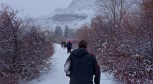 9 Picturesque Trails In Washington That Are Perfect For Winter Hiking
