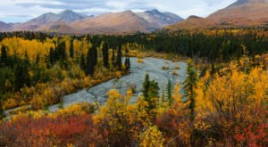 17 Incredible Trips In Alaska That Will Change Your Life