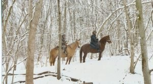 The Winter Horseback Riding Trail In Nebraska That's Pure Magic