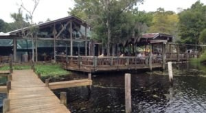 Eat Scrumptious Meals Next To An Alligator At Clark's Fish Camp, A Unique Restaurant In Florida