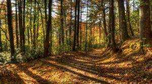 The Hidden Park That Will Make You Feel Like You've Discovered North Carolina's Best Kept Secret