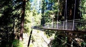 The Terrifying Swinging Bridge Near Portland That Will Make Your Stomach Drop