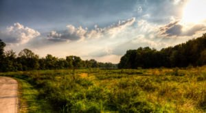 The Hidden Park That Will Make You Feel Like You've Discovered Nashville's Best Kept Secret