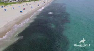 Someone Flew A Drone High Above Florida And Captured The Most Breathtaking Footage