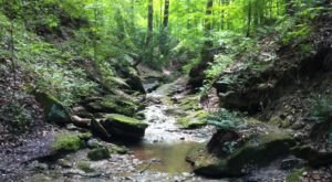 The Hidden Park That Will Make You Feel Like You've Discovered Indiana's Best Kept Secret