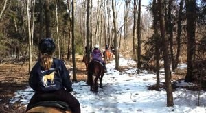 The Winter Horseback Riding Trail In Delaware That's Pure Magic