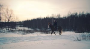 The Winter Horseback Riding Trail Near Cleveland That's Pure Magic