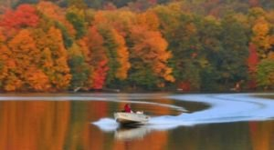 7 Secret Spots Near Pittsburgh Where Nature Will Completely Relax You