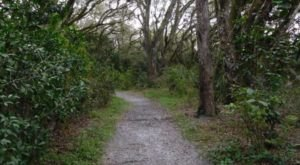 The Hidden Park That Will Make You Feel Like You've Discovered Florida's Best Kept Secret
