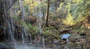 The Hidden Park That Will Make You Feel Like You've Discovered West Virginia's Best Kept Secret