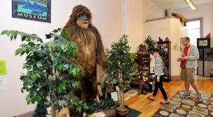 The International Cryptozoology Museum In Maine Is Not For The Faint Of Heart