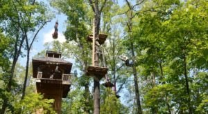 There's An Adventure Park Hiding In The Middle Of An Arkansas Forest And You Need To Visit