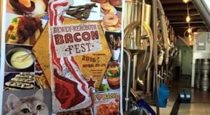 There's Nothing Better Than Delaware's Mouthwatering Bacon Festival