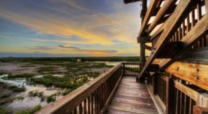 Escape To These 10 Hidden Oases In Florida To Find Peace And Quiet