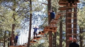 An Adventure Park Hiding In The Middle Of An Arizona Forest, Flagstaff Extreme Is Worth A Visit