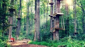 An Exciting Adventure Park In Maryland, Sandy Spring Is A Fun-Filled Outing