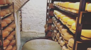 Most People Have No Idea Giant Tunnels Of Cheese Are Hiding New York