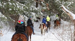 The Winter Horseback Riding Trail Near Buffalo That's Pure Magic