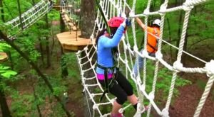 There's An Adventure Park Hiding In The Middle Of An Alabama Forest And You Need To Visit
