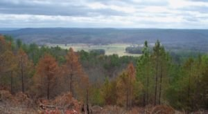 There's A Tiny Town In Alabama Completely Surrounded By Breathtaking Natural Beauty
