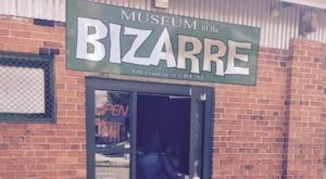 The Museum Of The Bizarre In North Carolina Is Not For The Faint Of Heart
