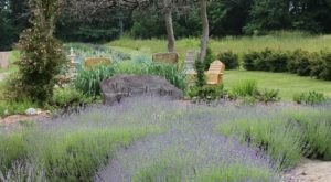 The Beautiful Lavender Farm Hiding In Plain Sight In Indiana That You Need To Visit