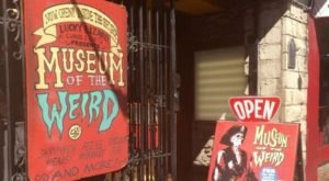 The Museum Of The Weird In Texas Is Not For The Faint Of Heart