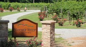 The Remote Winery Near Nashville That's Picture Perfect For A Day Trip