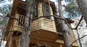 Sleep Underneath The Forest Canopy At This Epic Treehouse In Florida