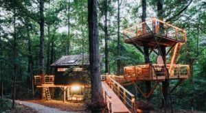 Sleep Underneath The Forest Canopy In The Treehouse At Bolt Farm In South Carolina