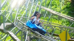 A Mountain Coaster In Pennsylvania, The Appalachian Express Offers An Exhilarating Ride