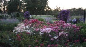 The Secret Garden In North Dakota You're Guaranteed To Love