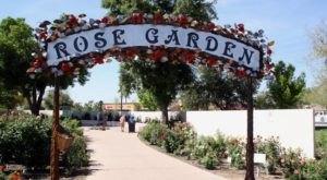 The Secret Garden In Arizona You're Guaranteed To Love