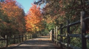 Take These 8 Walking Paths In Rhode Island For A Casual Stroll Through Gorgeous Scenery