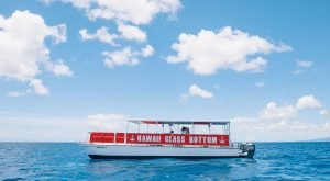 The Amazing Glass-Bottomed Boat Tour In Hawaii Will Bring Out The Adventurer In You