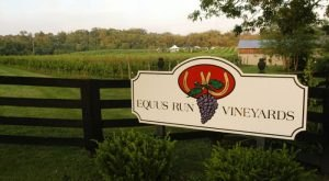 The Remote Winery In Kentucky That's Picture Perfect For A Day Trip