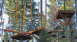 There's An Adventure Park Hiding In The Middle Of A Montana Forest And You Need To Visit